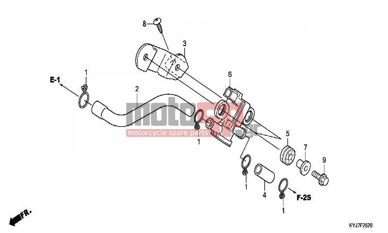 motoSP - HONDA - CBR250R (ED) ABS 2011 - Engine/Transmission